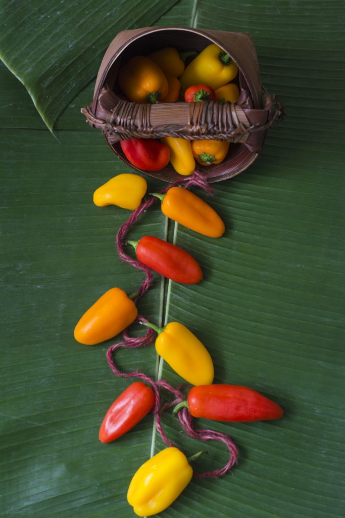 sweet-peppers-5