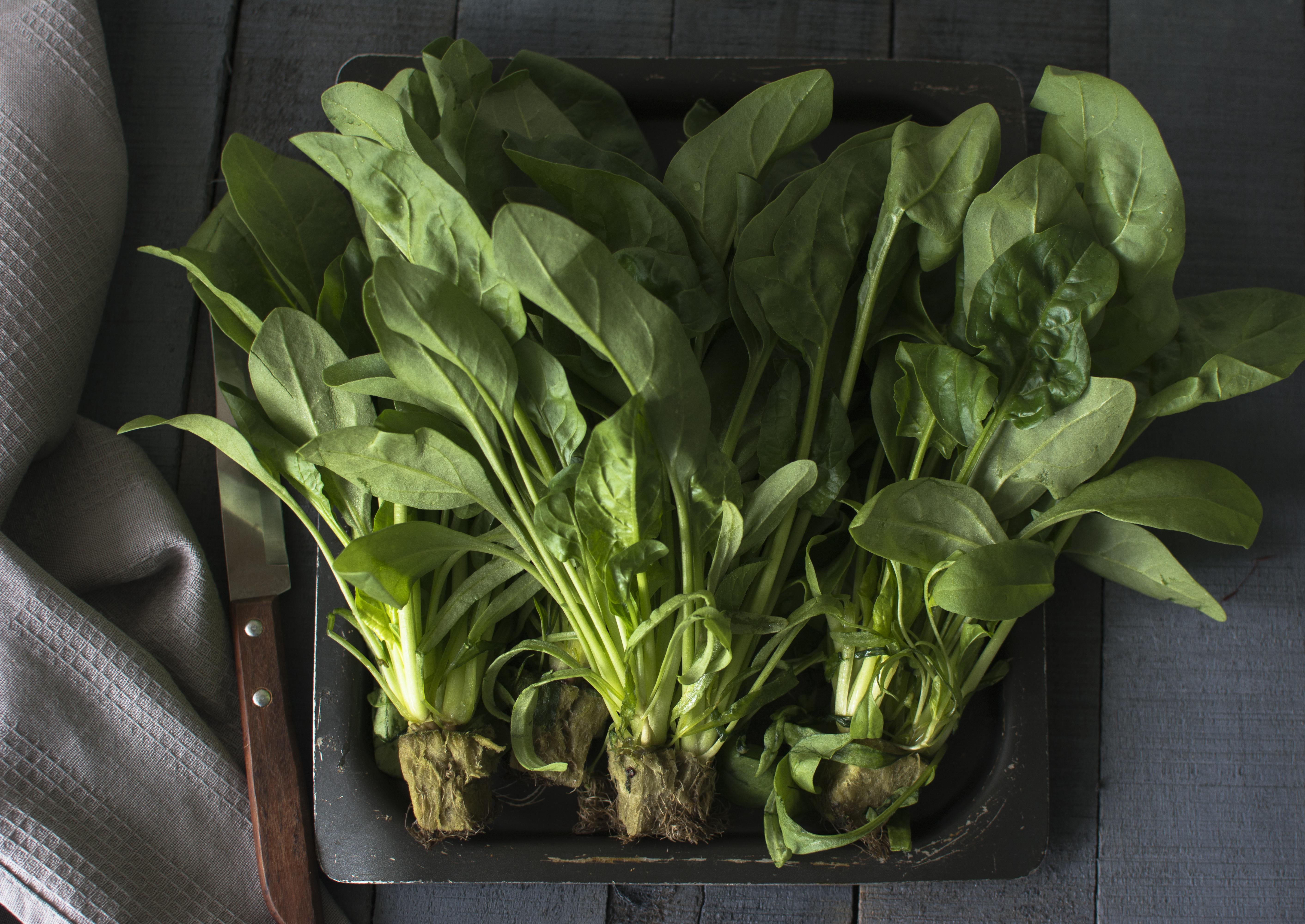 spinach-9